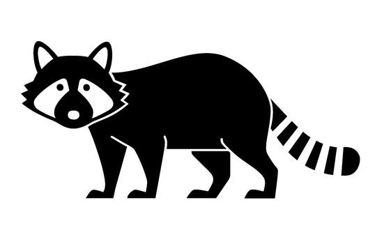 浣熊的剪影