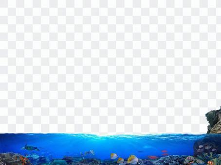 Sea underwater fish illustration decorative ruled line 2