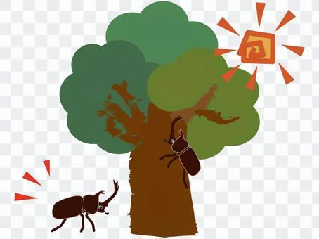 甲蟲爬樹(彩色)
