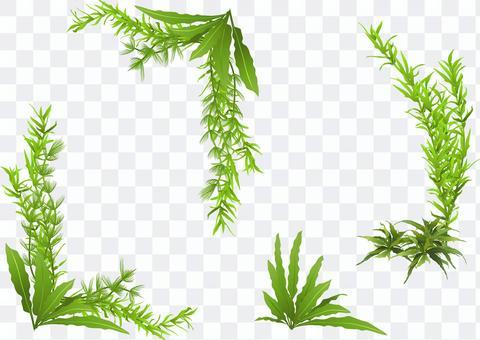 水生植物角架B