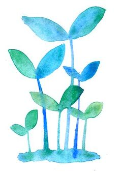 새싹 블루