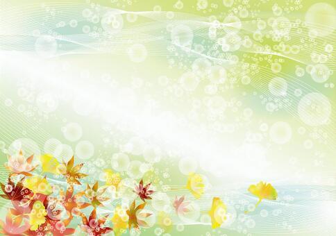 秋葉和銀杏47