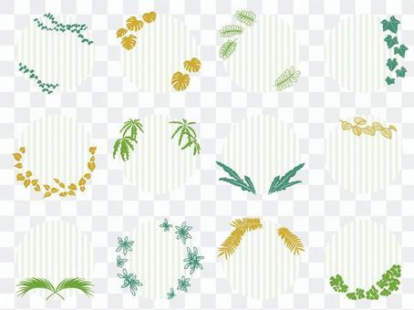 植物圓標籤材料收藏