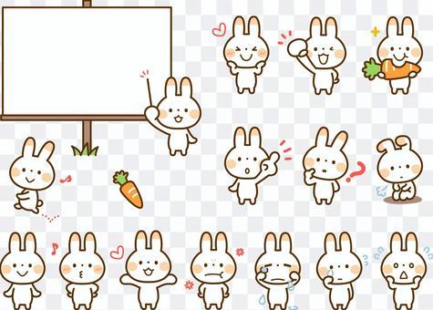各種各樣的套兔子姿勢