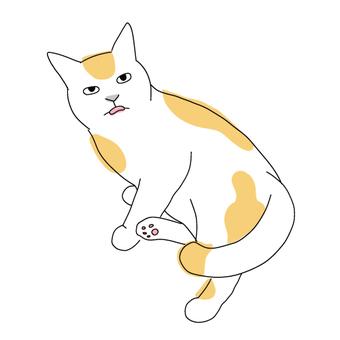 一隻貓的全身插圖一隻舌頭伸出來的貓
