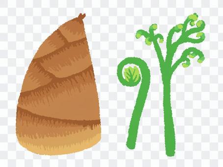 죽순과 태엽과 고사리