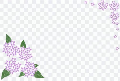 明信片與可愛的粉紅色蓬塔斯花