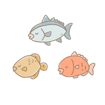 Tuna, Thai, Stephanolepis fish