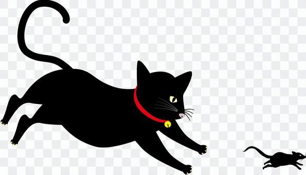 貓黑貓黑老鼠追逐逃跑