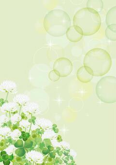 三葉草和白三葉草