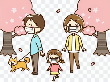與家人一起觀看櫻花盛開和傳染病的措施