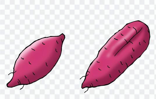 紅薯(2)