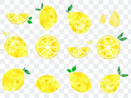 清新可愛的水彩檸檬素材集