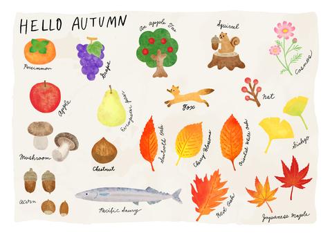 秋葉和果實