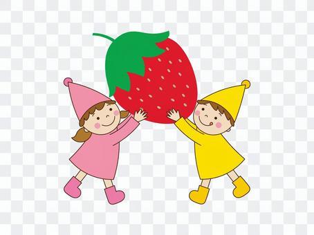 草莓採摘的插圖