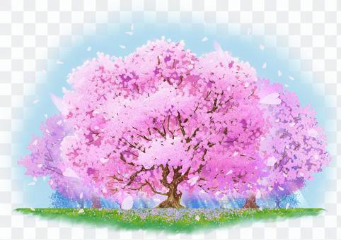 自然插圖-櫻花亂舞之森