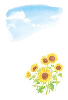 夏天的天空和向日葵的夏天問候明信片水彩