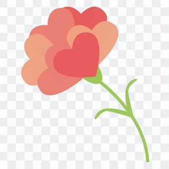 康乃馨心的花瓣
