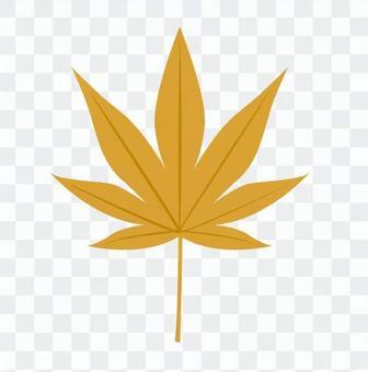 楓木(黃色)