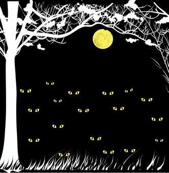 森山草村野獸肉食性夜間黑暗
