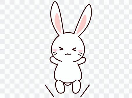 Usagi (jump)