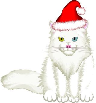 Cat pet seat Christmas hat