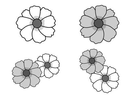코스모스 (흑백)