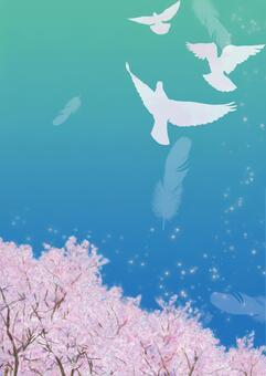비둘기가 날고 푸른 하늘 벚꽃 2