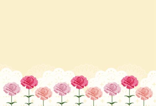 康乃馨11-1輪(明信片尺寸)
