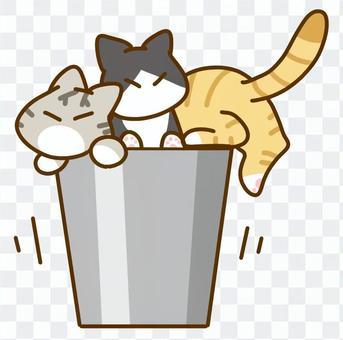 ゴミ箱に入る猫
