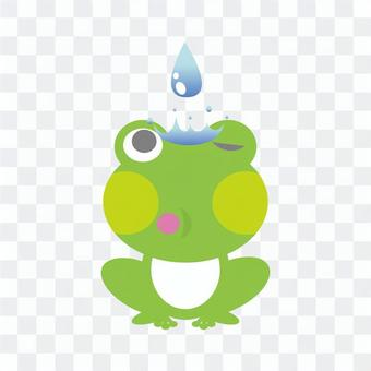 Frog that got a drop of water