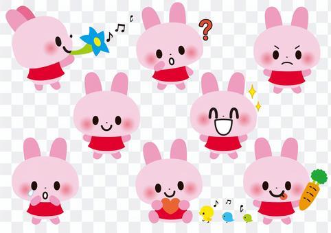 可愛的兔子