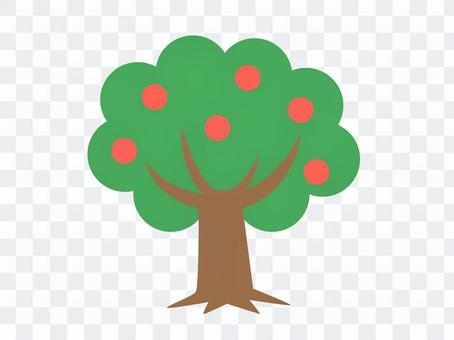 樹(水果)