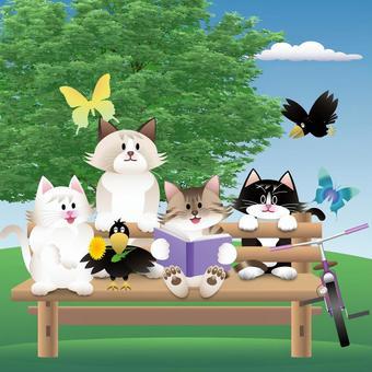 Bench cat_01