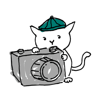 Illustration taken by a cat photographer