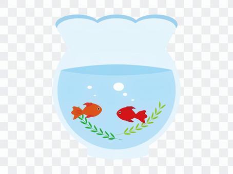 黃金魚和魚碗