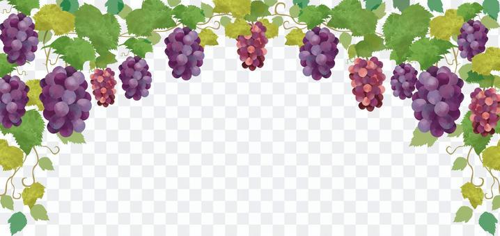 葡萄水彩畫框