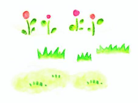 Watercolors of flowers