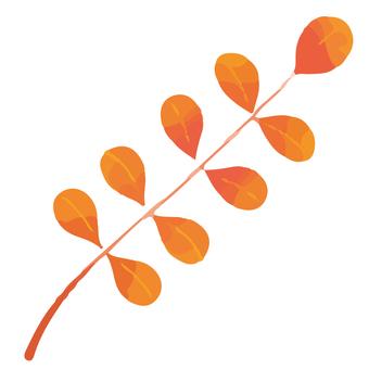 Autumn leaves fern plant 02