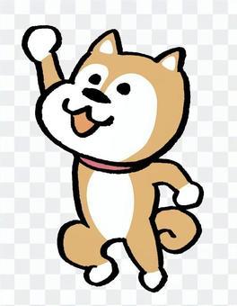Shiba Inu jump