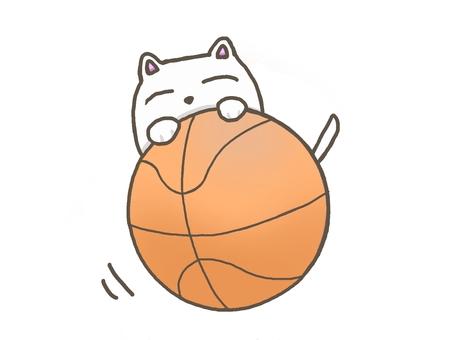 一隻貓滾動籃球的插圖