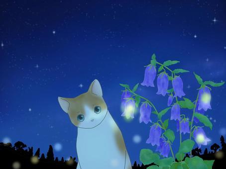 風鈴和螢火蟲神秘貓