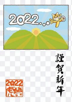 Tiger 01_38 (2022 First Sunrise / Airplane)