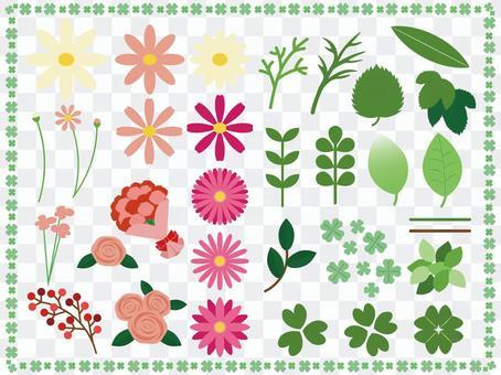 花和葉的項目集