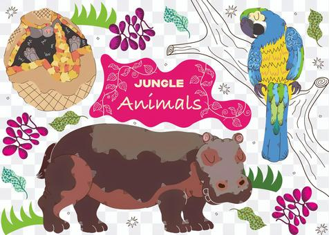 Animals in the jungle 3