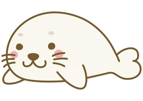 可愛的海豹的插圖