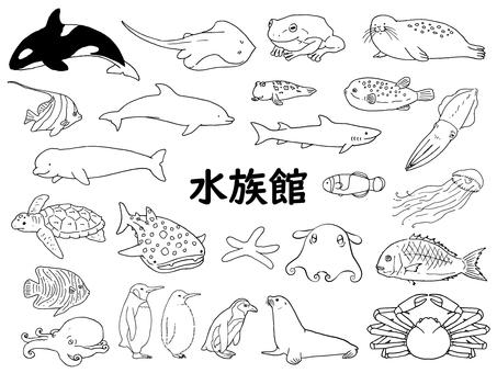 水族館生物的插圖(線描)
