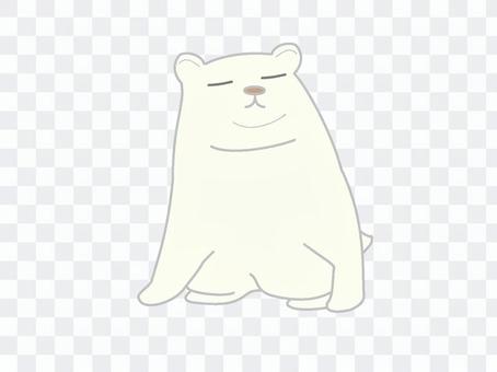 Cute polar bear