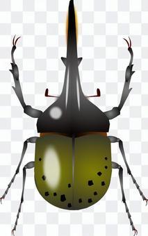 甲蟲(Heracular甲蟲)