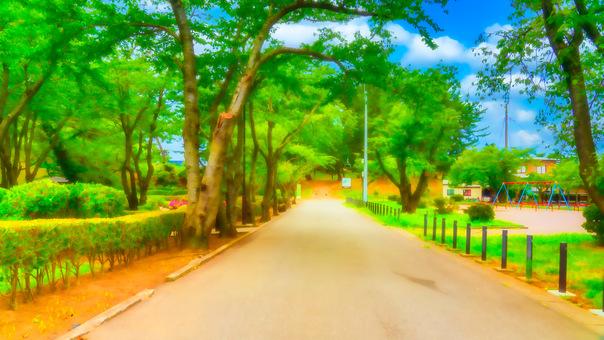 公園和道路